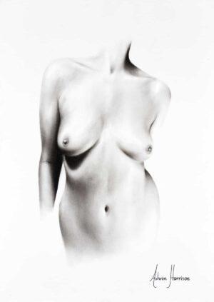 Ashvin Harrison Art- Nude Woman Charcoal Study 66